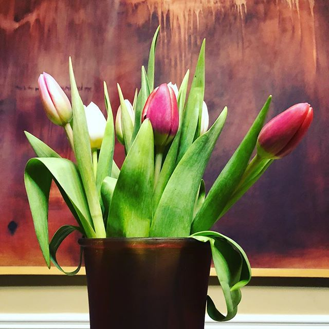 two lips + oil painting I did in college #pretty #art #nashville #springtime #flowers #tulips
